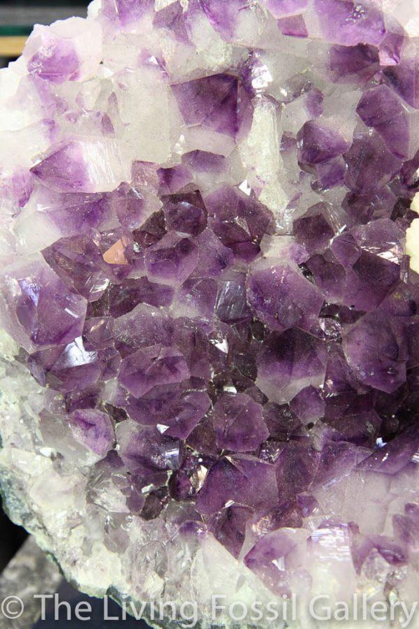 Amethyst Cluster-36
