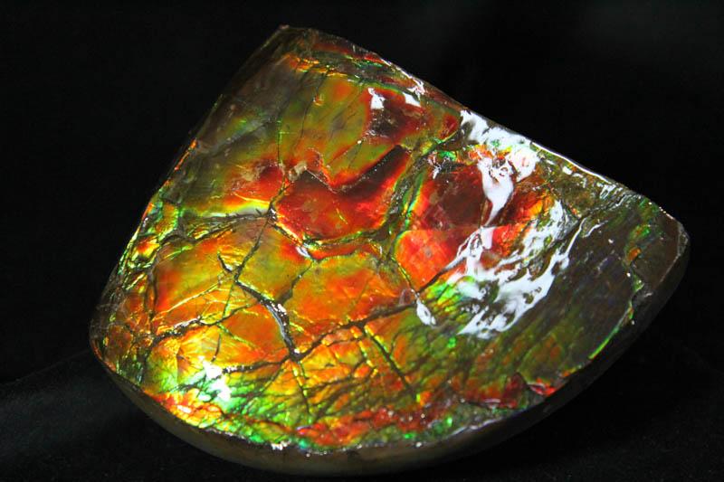 Ammolite Chunk - AAA Grade-0