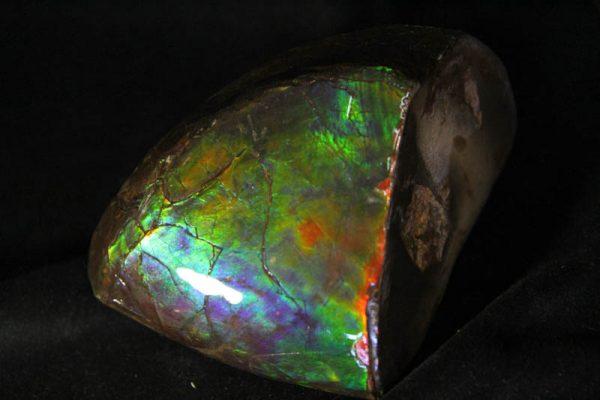 Ammolite Chunk - AAA Grade-836