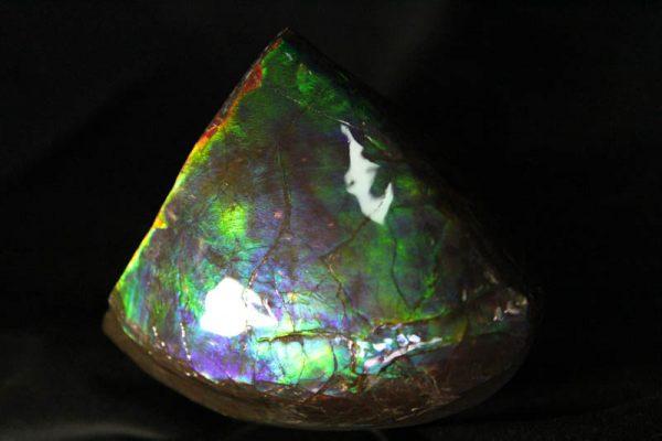 Ammolite Chunk - AAA Grade-835