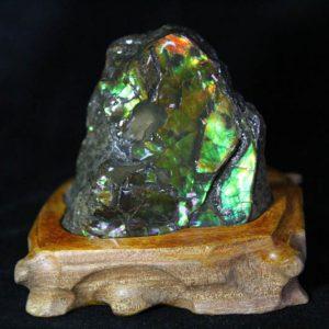 Ammolite - Suiseki Stone - AA Grade -0