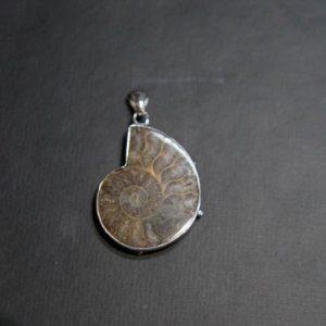 Ammonite Pendant in Silver-0