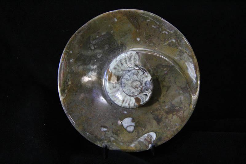Ammonite Round Bowl Small-0