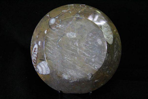 Ammonite Round Bowl Small-1408
