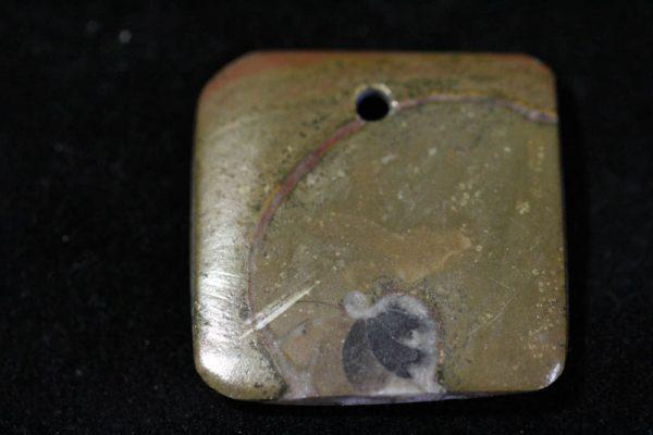 Ammonite Pendant A grade - Rectangle-1532