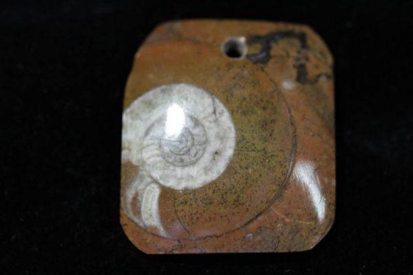 Ammonite Pendant A grade - Rectangle-0