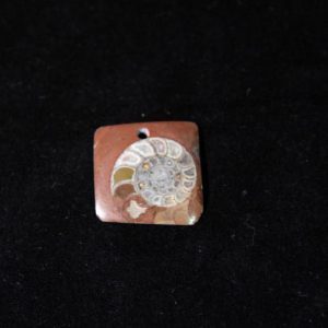 Ammonite Pendant A grade - Square-0