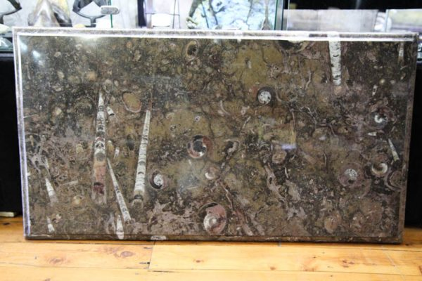 Fossil Marble Table-0