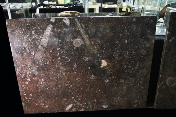 Fossil Marble Table-1971