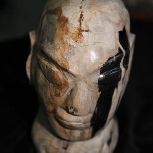 Petrified Wood Head-0