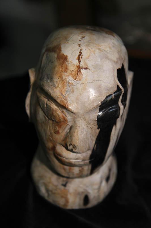 Petrified Wood Head-0