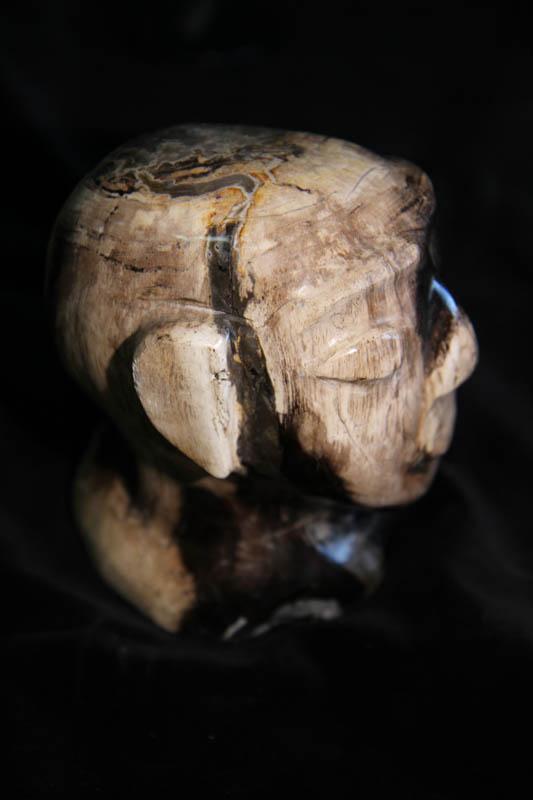 Petrified Wood Head-2596