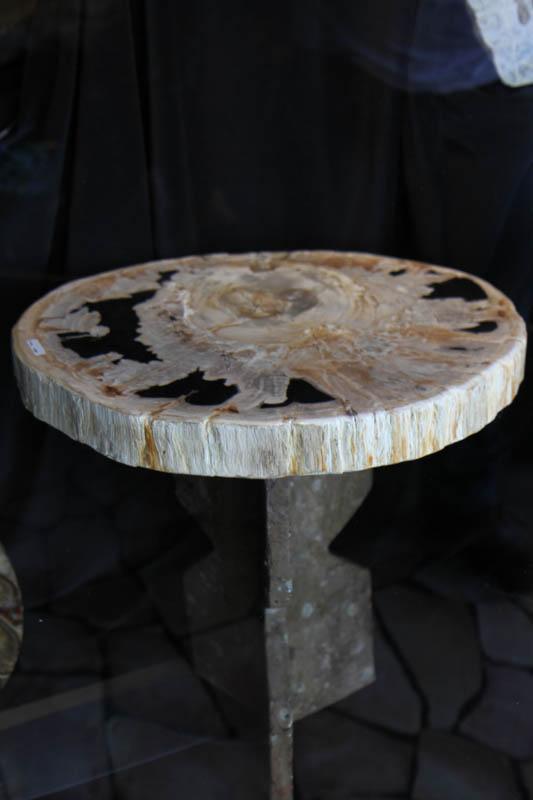Petrified Wood Table-2751