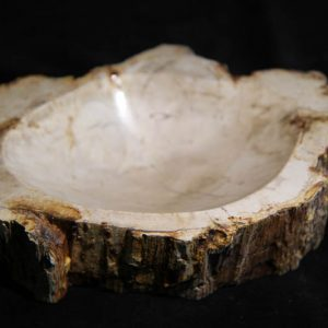 Petrified Wood Bowl-0