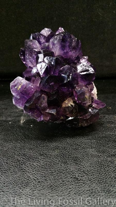 Amethyst Cluster-3542