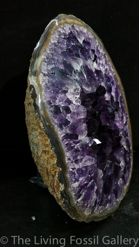 Amethyst Geode-3537